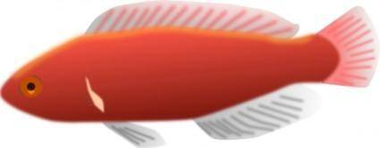 free vector Fish clip art