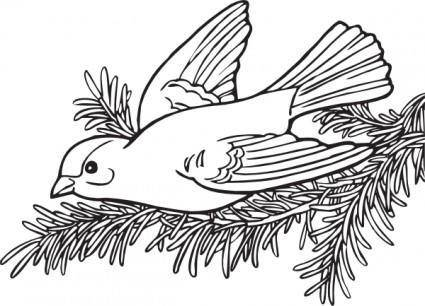 Coloring Book Willow Goldfinch clip art