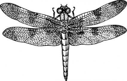 free vector Dragonfly clip art