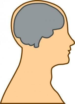 Medical Diagram Of Brain clip art