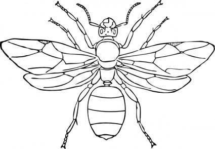 free vector Queen Ant clip art