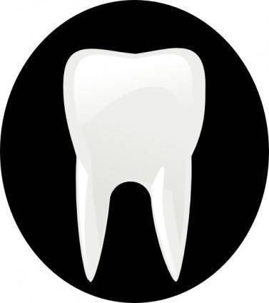 Tooth Molar clip art