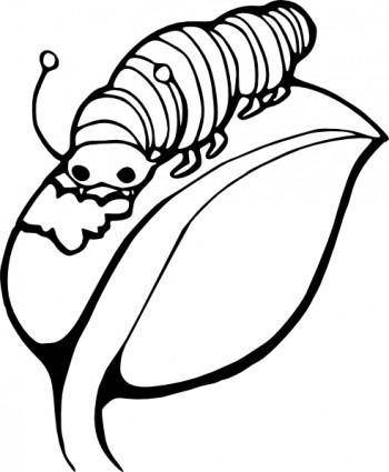 free vector Catterpillar On Leaf clip art