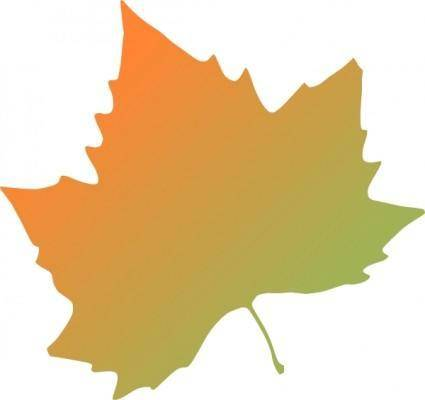 Kattekrab Plane Tree Autumn Leaf clip art