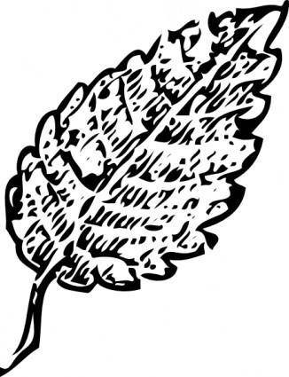 Outline Leaf clip art