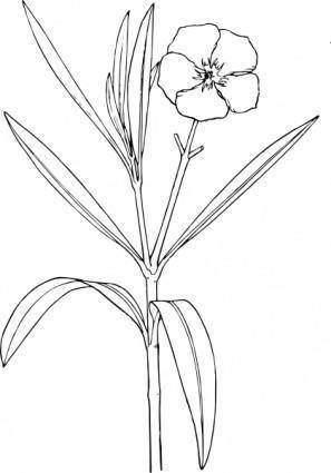 Flower Bush clip art