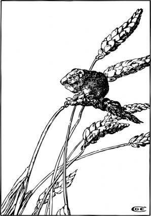 Harvest Mouse clip art