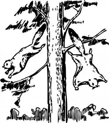 Flying Squirrels clip art