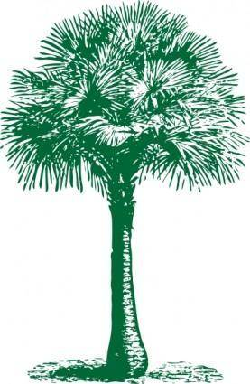 free vector Australian Fan Palm clip art