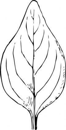 Periwinkle Leaf clip art