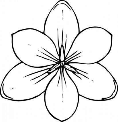 Crocus Flower Top View clip art