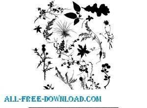 free vector Plant Vectors