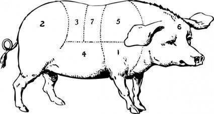 Hog clip art