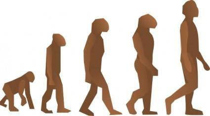 free vector Evolution Steps clip art