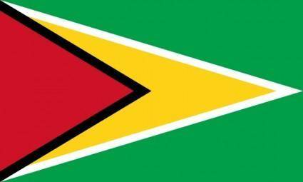 Flag Of Guyana clip art