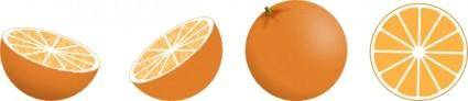 Oranges clip art