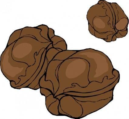 Walnuts clip art