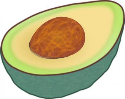 free vector Avocado clip art