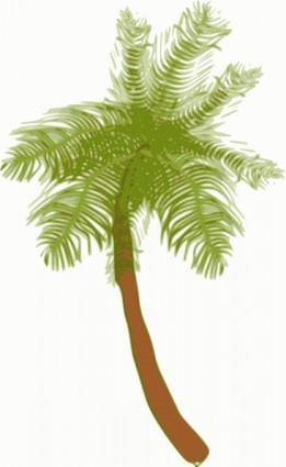 free vector Coconut Tree clip art