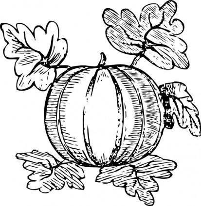 free vector Melon clip art