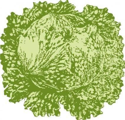 Lettuce clip art
