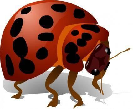 Lady Bug clip art