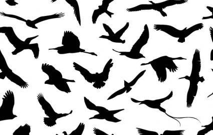 free vector 30 Different Flying Birds