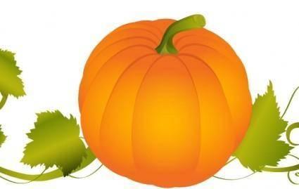 free vector Pumpkin Vector Graphic