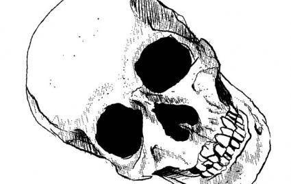 free vector Skull Vector Art