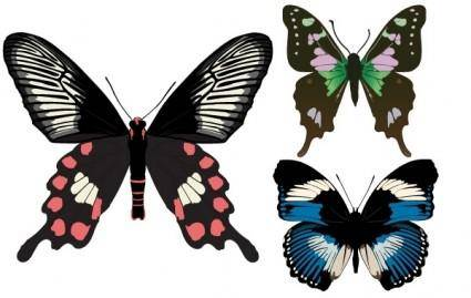 free vector Three Beautiful Butterfly Vectors