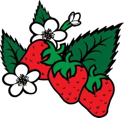 Strawberries clip art