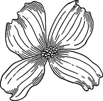 free vector Dogwood clip art
