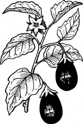 free vector Eggplant clip art