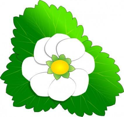 Strawberry Flower clip art