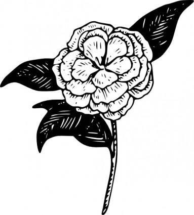free vector Flower Camellia clip art