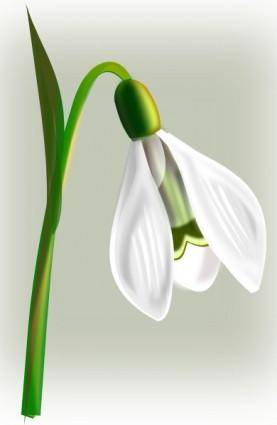 Snow Drop clip art
