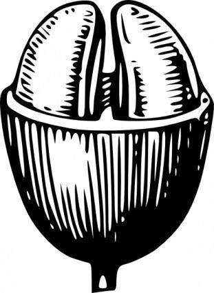 free vector Coffee Bean clip art