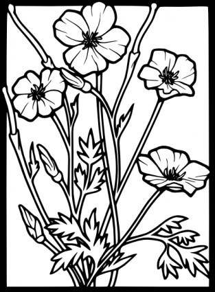 free vector Poppy  clip art