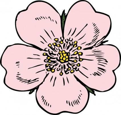 Wild Rose clip art