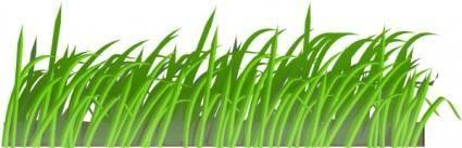 Grass Texture clip art