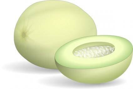 Honeydew Melon clip art