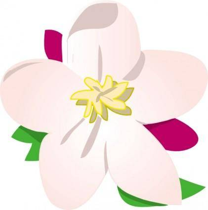 Apple Blossom clip art