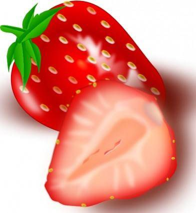 Strawberry clip art