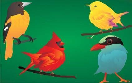 free vector 4 beautiful & detailed birds!