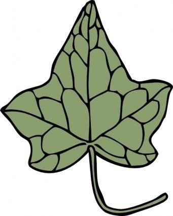 Oak Ivy Leaf clip art