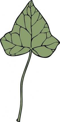 free vector Ivy Leaf clip art