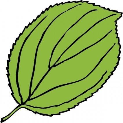 Serrate Leaf clip art