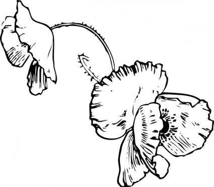 free vector Poppy Tattoo clip art