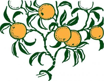 Orange Branch clip art