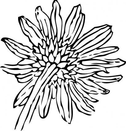 Back Of A Sunflower clip art